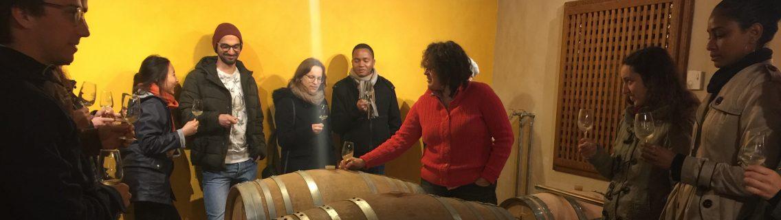 dégustation de vins bio dans le chai barriques de Herrebouc