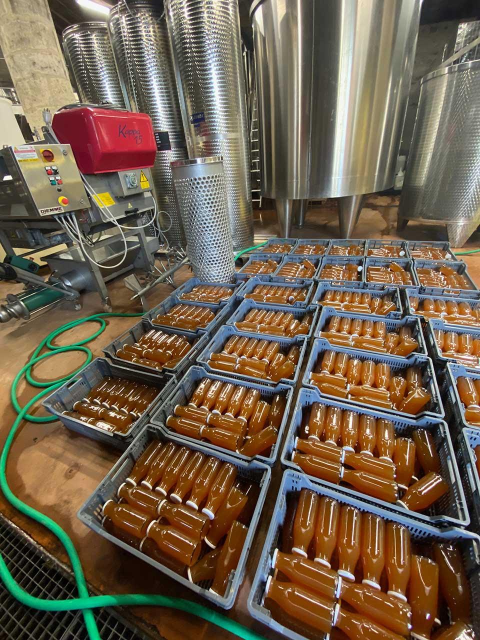 Bouteilles de jus de pommes pasteurisées dans le chai