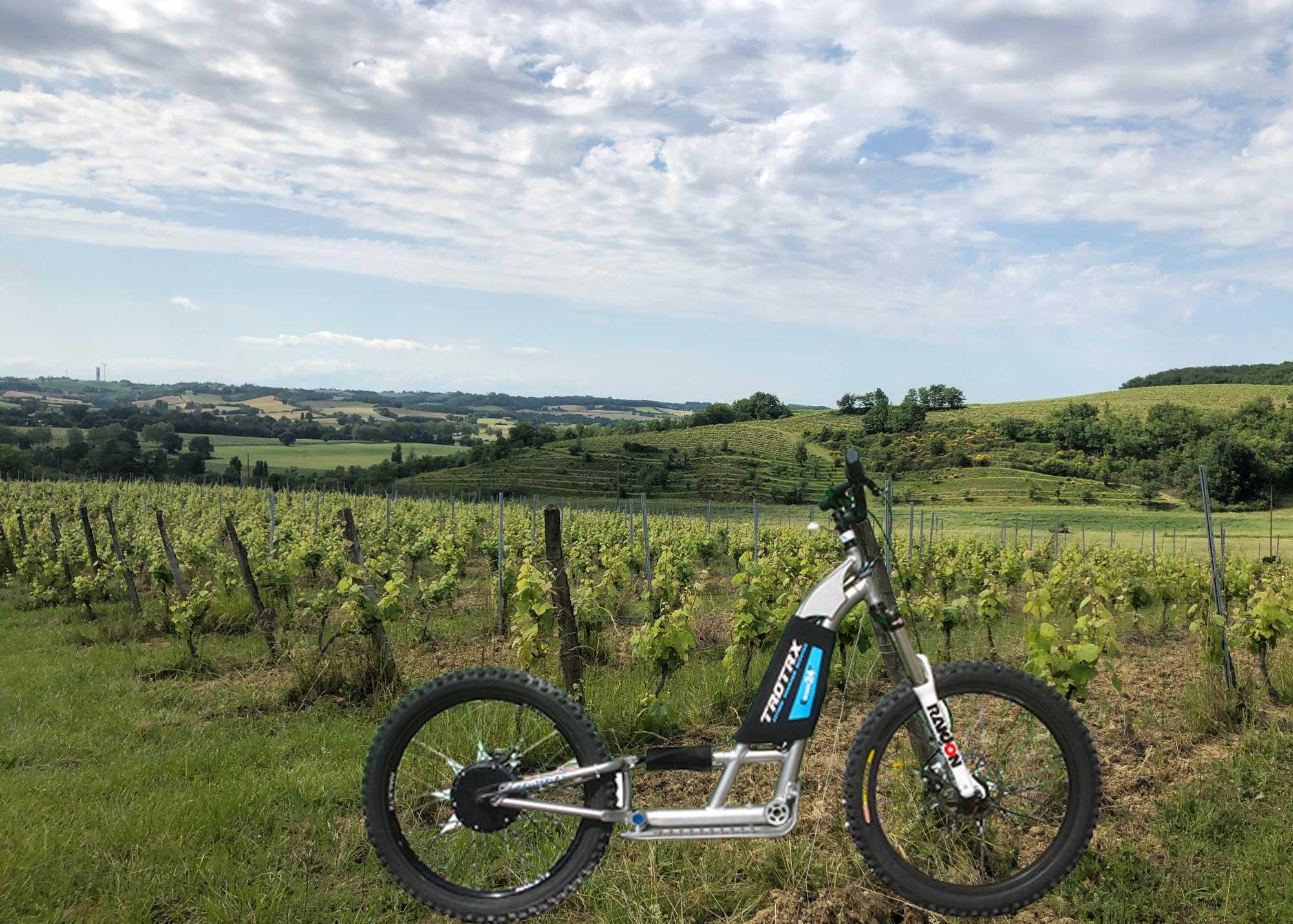 Trottinette électrique dans les vignes de Herrebouc